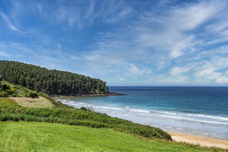 nature, beach, outdoors-6565499.jpg